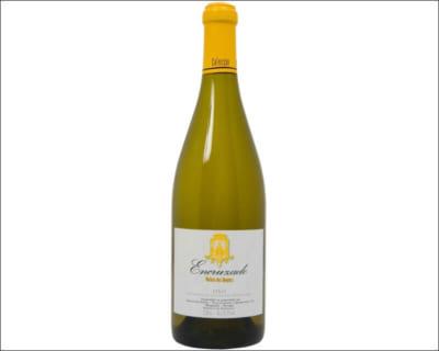 みんな知らないの?知らなきゃ損!ポルトガルワインのレべルが凄い!